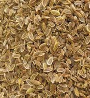 Dill Seed Dried Spice Herb