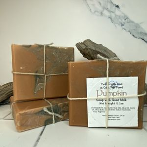 Pumpkin Scented Soap with Goat Milk