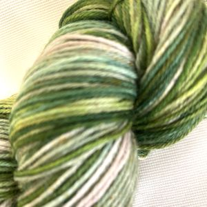 Deep Woods Fingering Handpaints Yarn