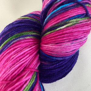 Hummingbird Fingering Handpaints Yarn