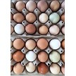 18 pk chicken eggs